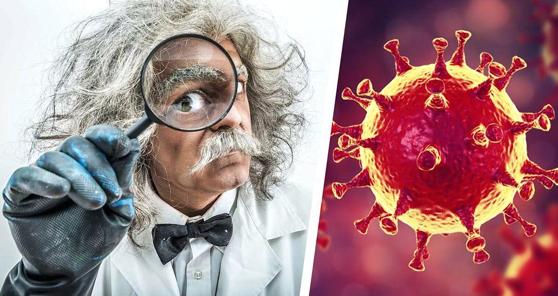 Ученые Кембриджа: эпидемия коронавируса началась ещё в сентябре 2019 года