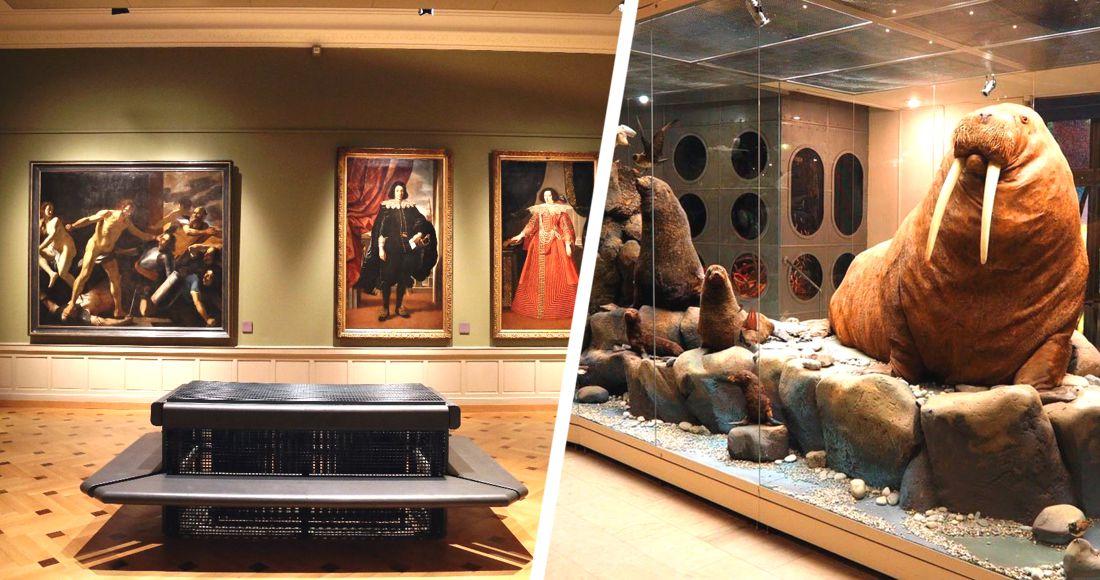 ЮНЕСКО: 13% музеев не смогут открыться после пандемии