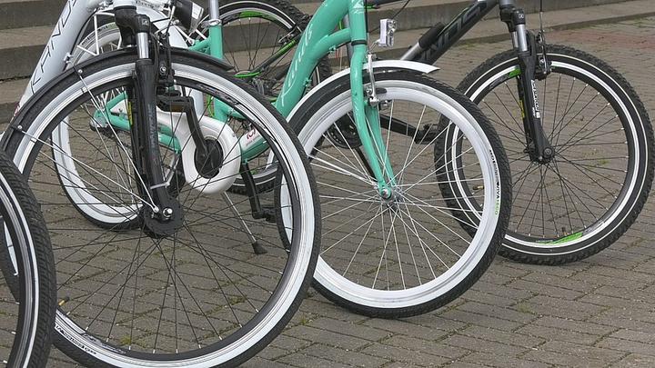 В Сопоцкине и на Августовском канале начали работать велопрокаты