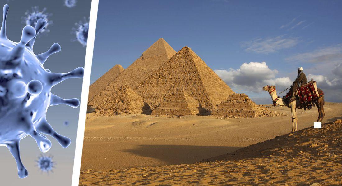 Власти Египта отчитались о количестве заразившихся туристов из Белоруссии, Украины и России