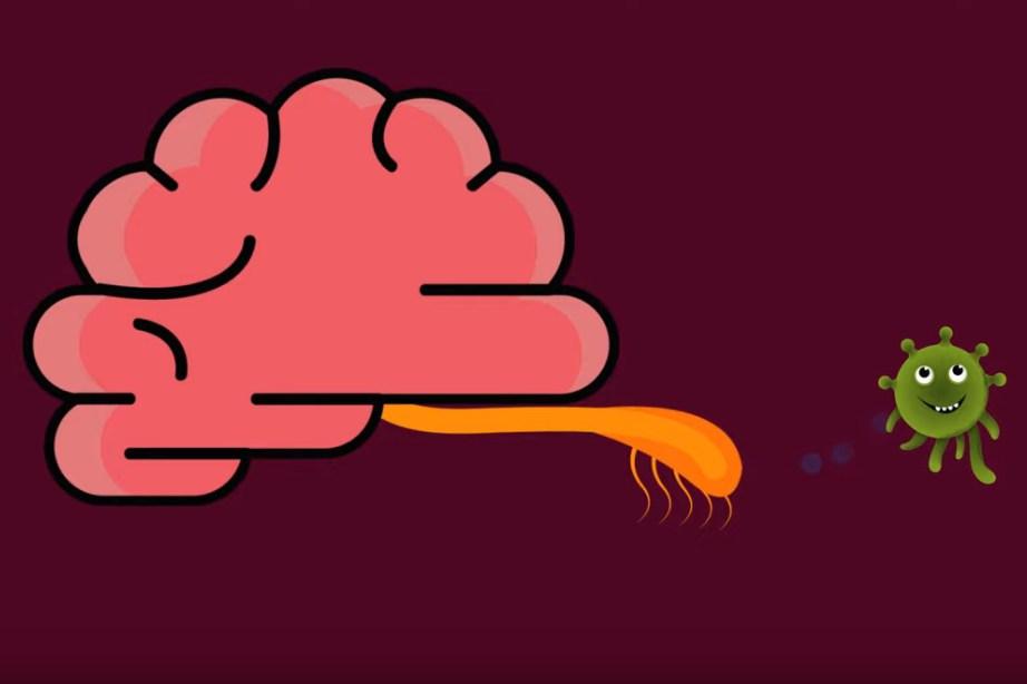 Турист заразился редкой амебой пожирающей мозг