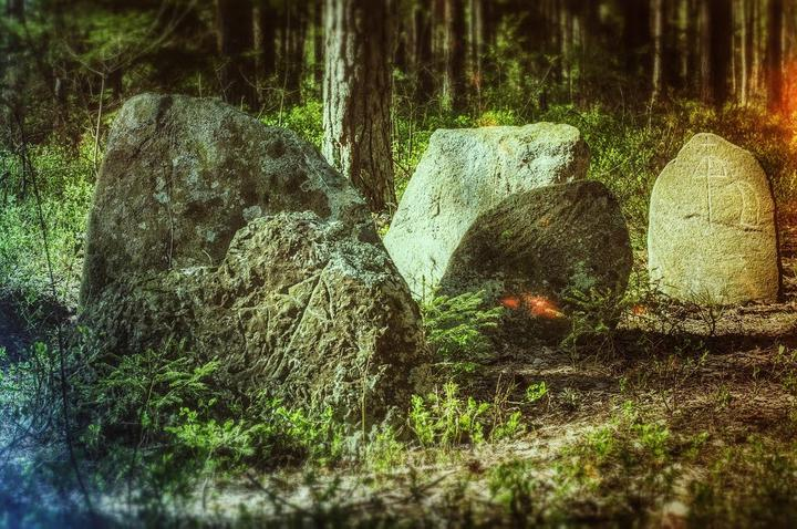 Фото: Александр Дехтярёнок, fgb.by
