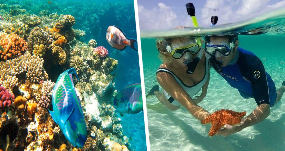 Туристам рассказали о «Египетских Мальдивах»: как туда попасть?