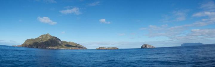 Вдали - Соловьиные острова и Недоступный остров. Фото: BRIAN GRATWICKE