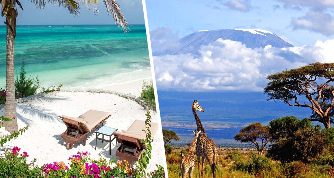 Интурист запустил чартер в Танзанию: стали известны цены на туры на Занзибар и расписание полётов