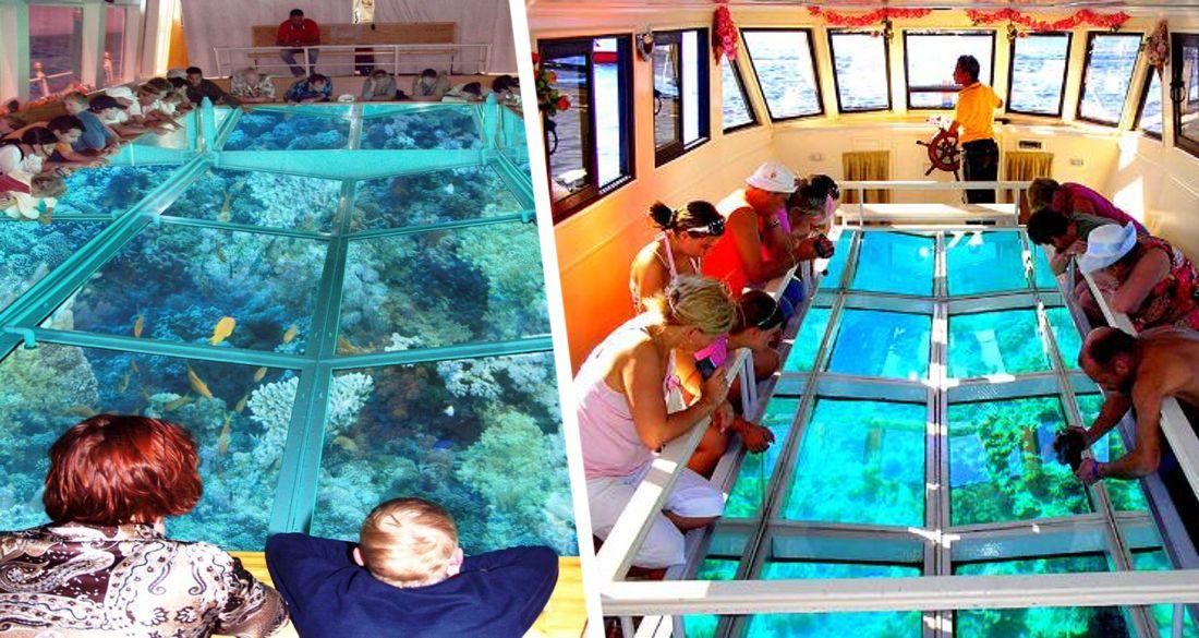 В Хургаде для туристов сделали лодку с самым большим в мире стеклянным дном