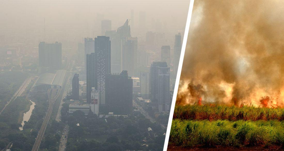 На Бангкок и Паттайю надвигается дым от больших пожаров