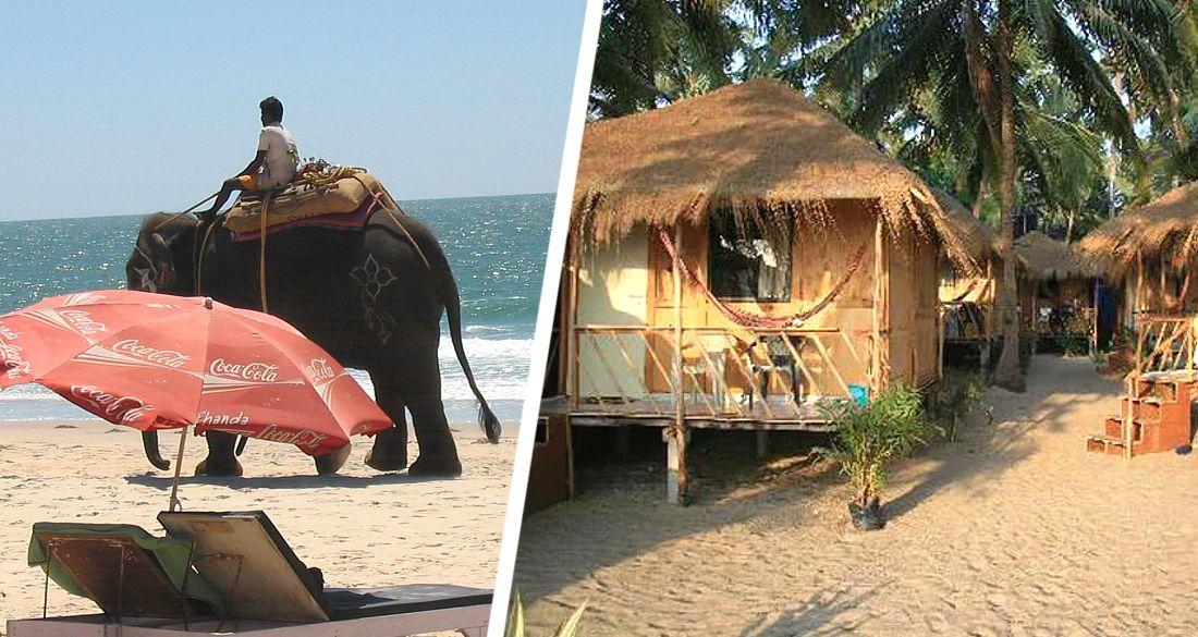 Плохие дороги, высокие цены, мусор и воровство бьют по туризму Гоа - исследование