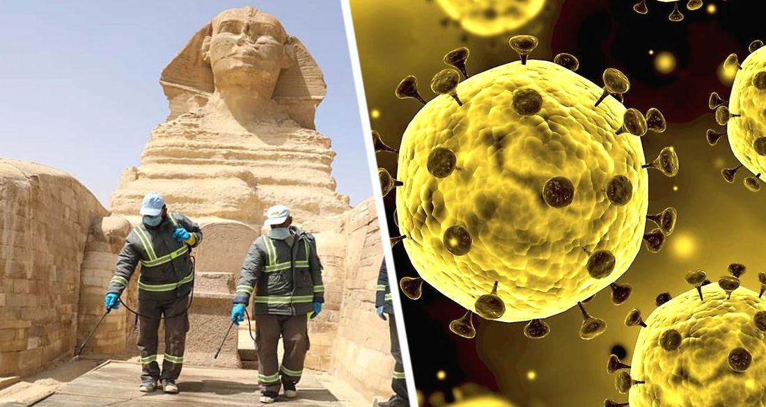 Угроза для туризма: посольство Китая в Египте выпустило заявление о новом опасном вирусе