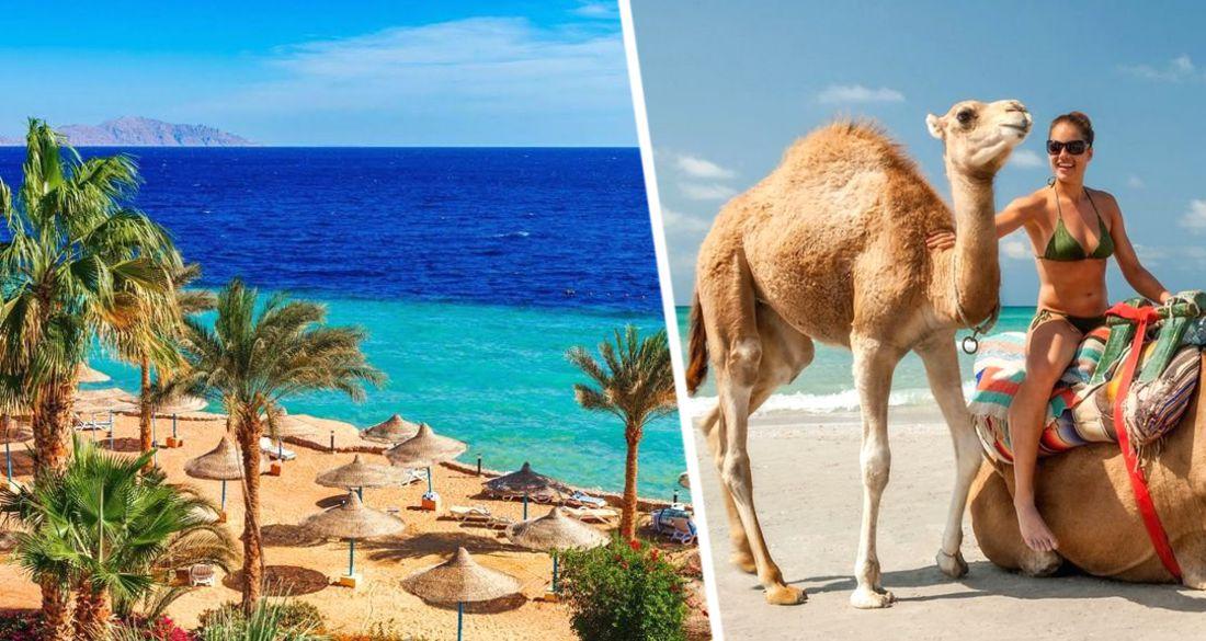 Египетские эксперты озвучили стоимость отелей в Хургаде: что ждёт российских туристов?