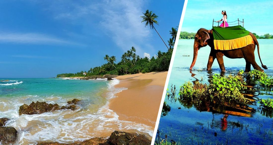 Российские туристы заняли на Шри-Ланке 4 место в январе