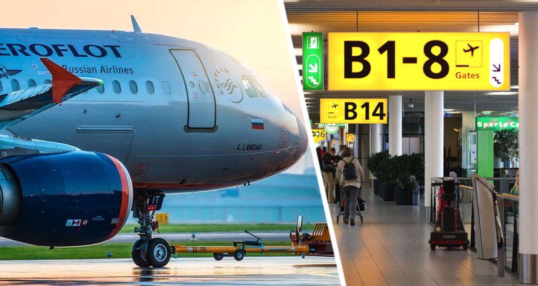 Аэрофлоту отдали рейсы в Германию из Санкт-Петербурга: названы города прилета