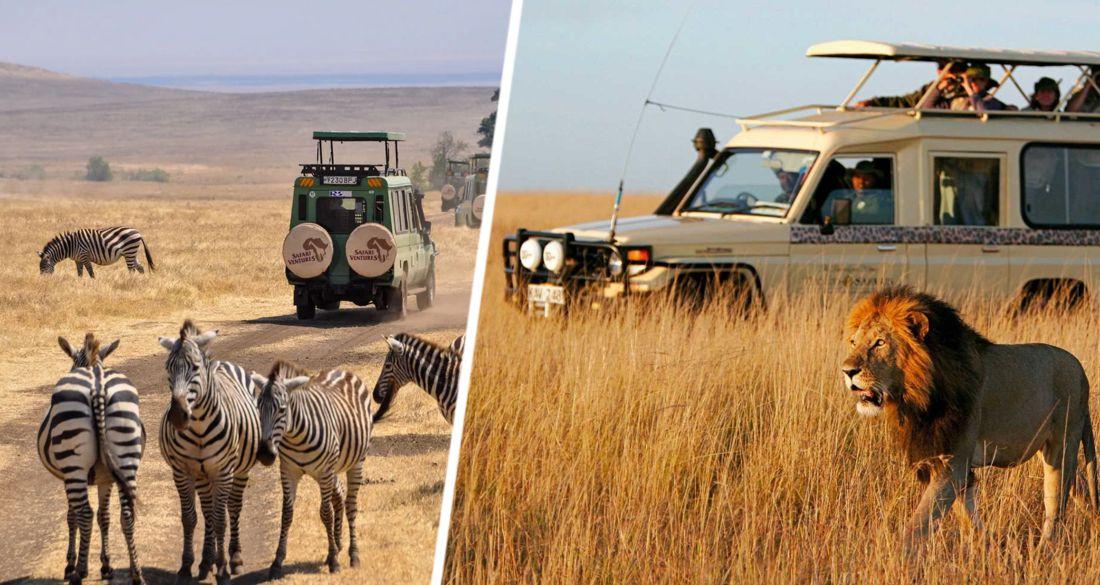Занзибара оказалась мало: теперь чартеры с туристами полетели в Кению
