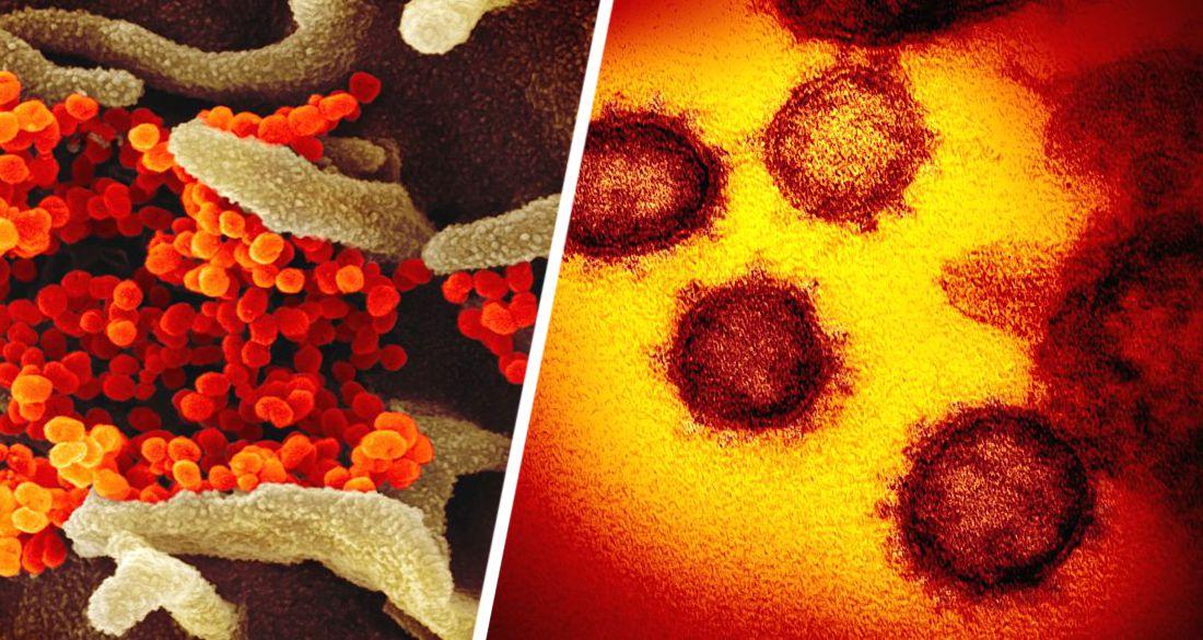 Суперзаразный вариант коронавируса, обнаруженный учеными, встревожил туризм