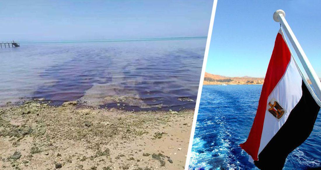 Пляжи Хургады залило нефтью, туризм оказался под угрозой