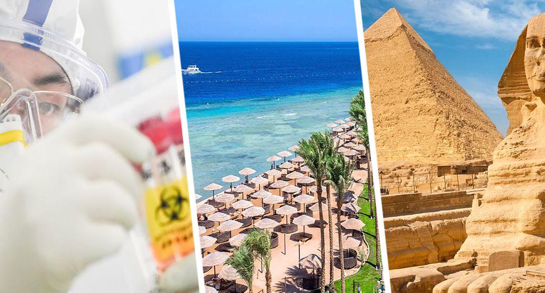 В туризм Египта посеяли тревогу четвертой волной и черной плесенью