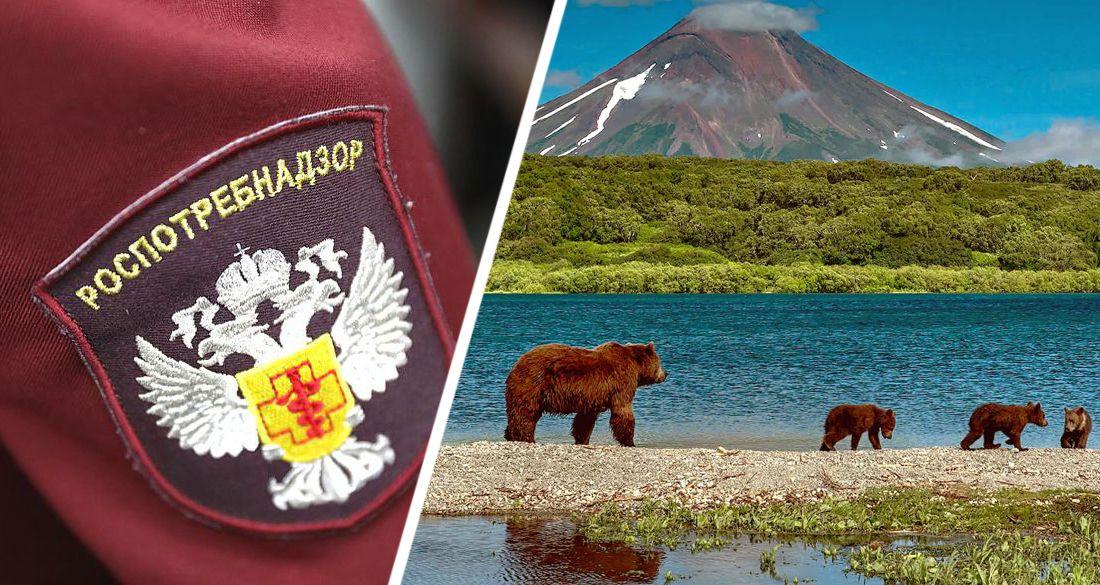 Только привитые российские туристы теперь смогут отправиться на Камчатку
