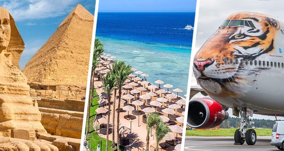 Стала известна единственная авиакомпания, которая будет летать на курорты Египта