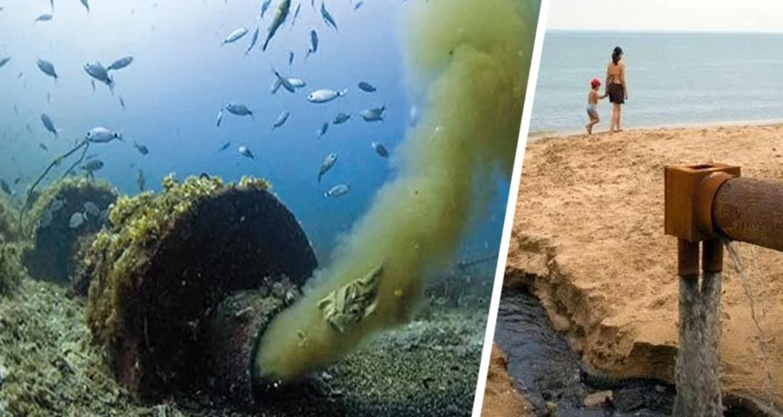 Туристы возмутились канализационной трубой на пляже в Крыму
