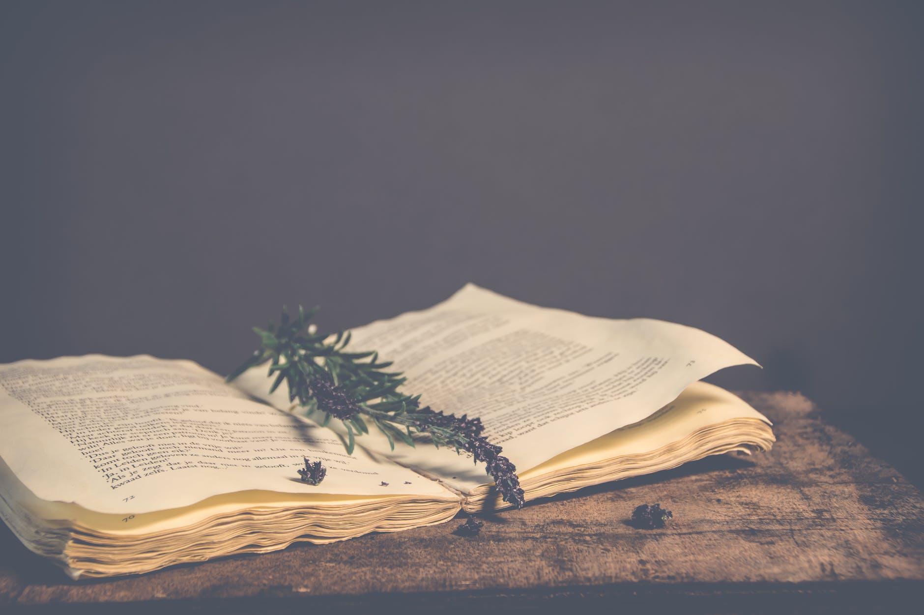 Бесплатный литературный гид по региону Мадрид