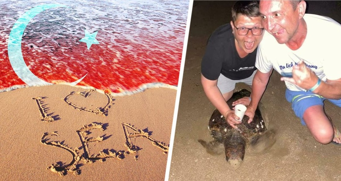 В аэропорту Анталии пойманы туристы, мучившие черепаху