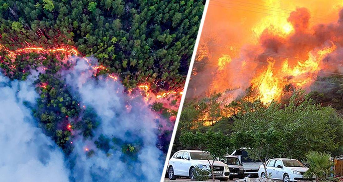 В Анталии и Мармарисе опять пожары: начались аресты