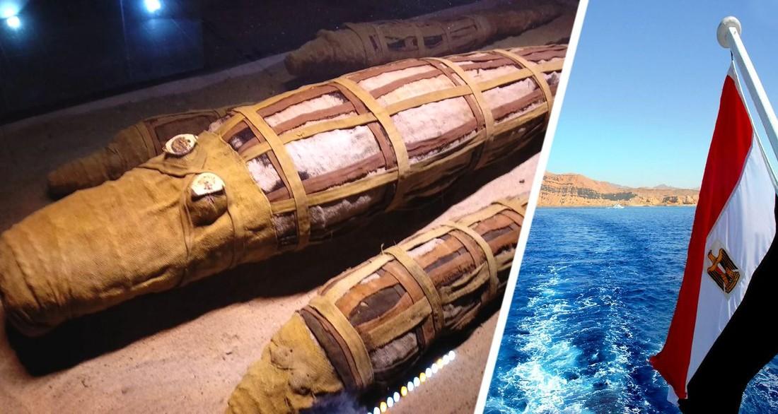 Гроб с мумифицированным крокодилом: Шарм-эль-Шейх выбрал экспонаты августа
