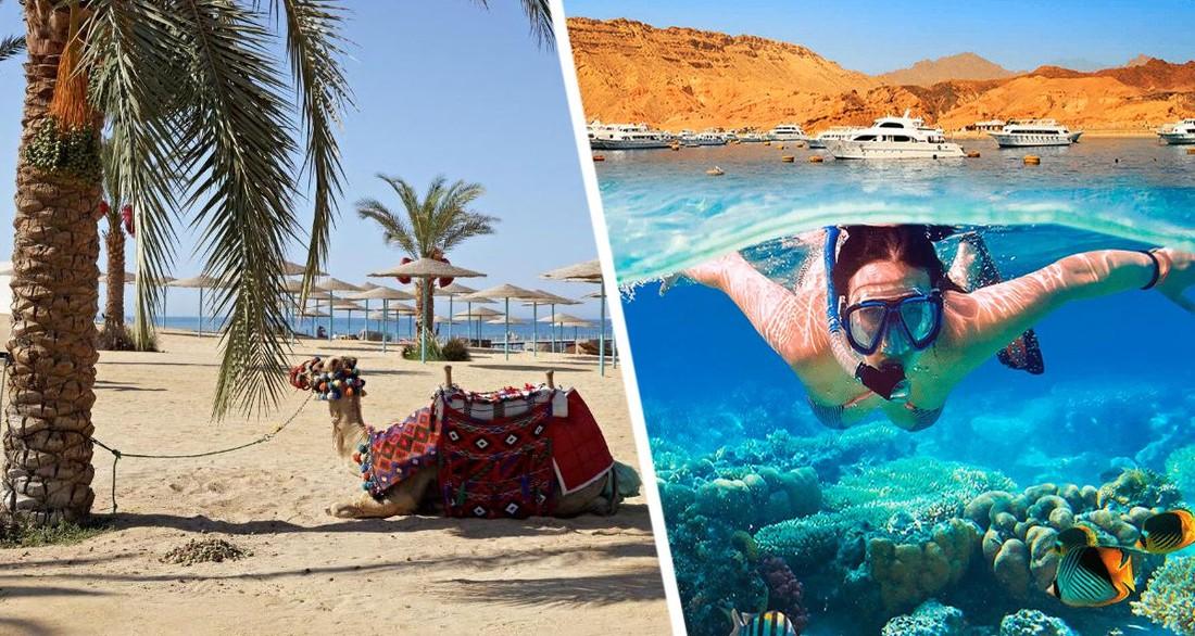 На курорты Египта обрушилась адская жара, туристы спасаются в Красном море
