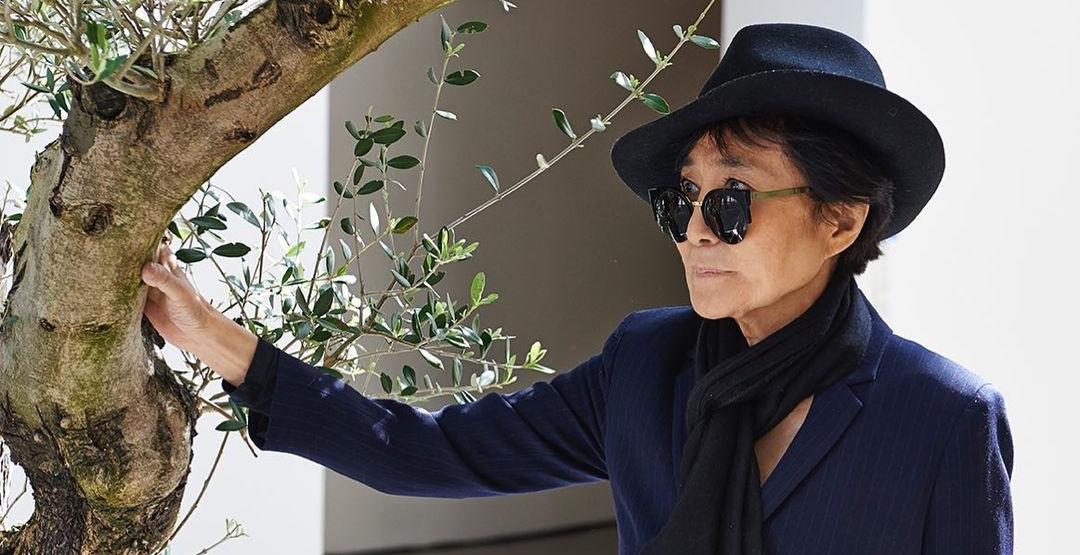 Дерево желаний от Йоко Оно прибыло в Мадрид