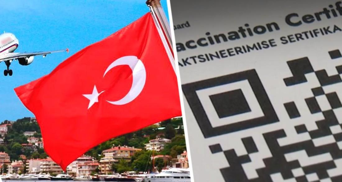 В Турции туристам теперь надо предъявить одну из трех справок перед посадкой на внутренние рейсы