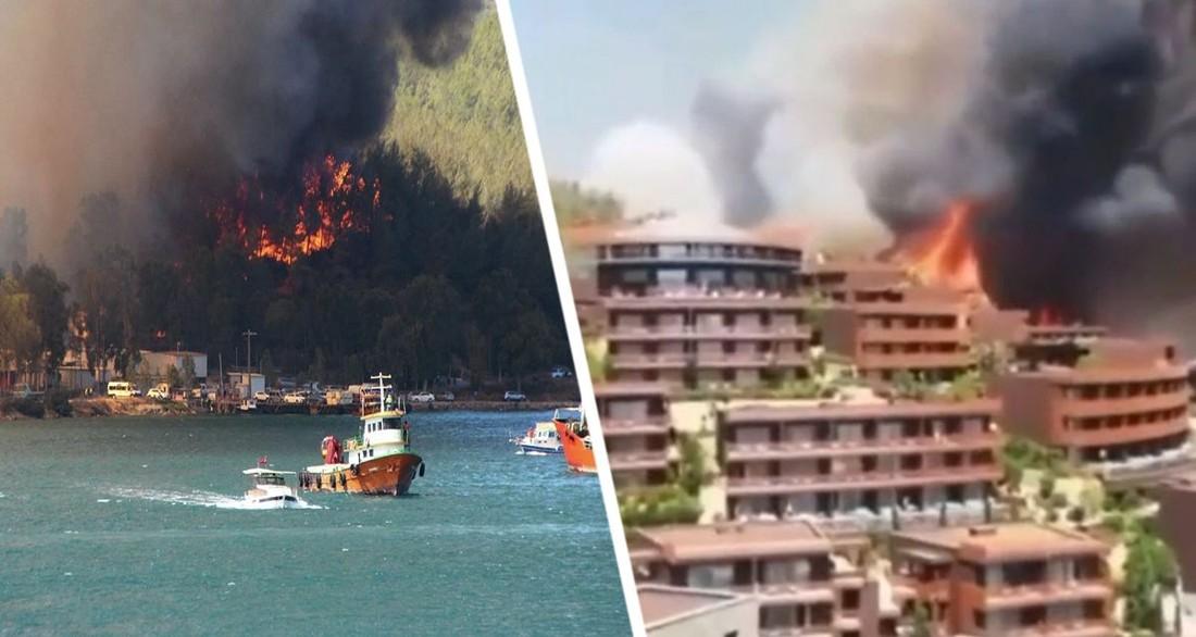 Туризм в Турции предупрежден об уголовной ответственности за остановку на обочинах и заход туристов в лес