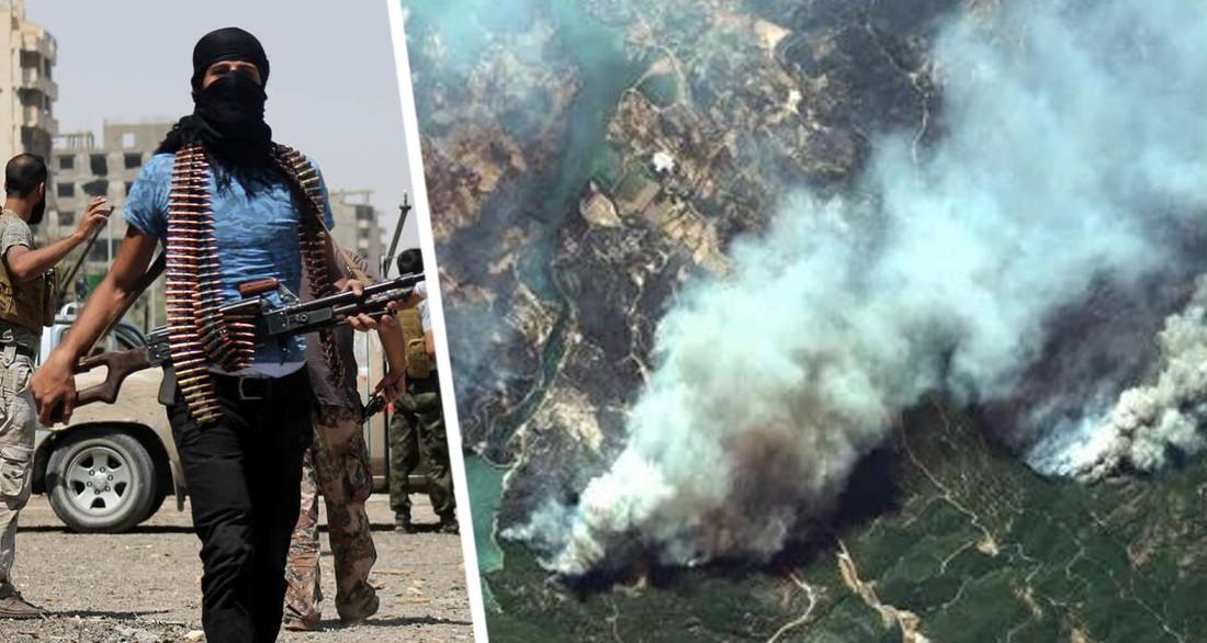 По туризму Турции нанесла удар террористическая организация: она взяла ответственность за пожары