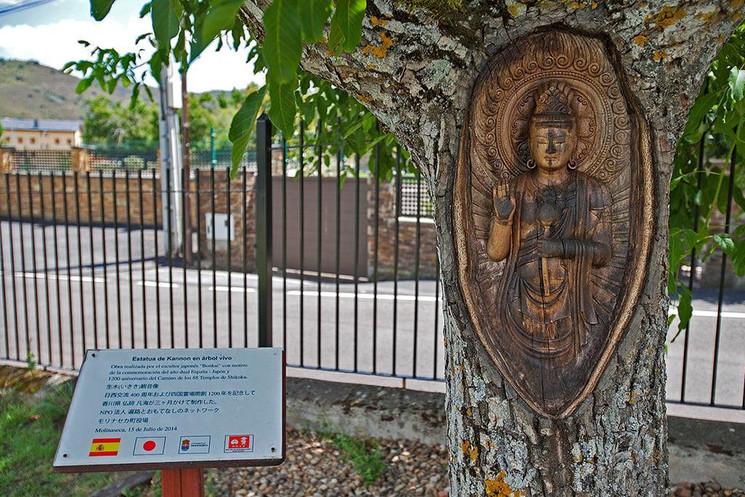 Новая жизнь погибших деревьев региона Кастилия и Леон