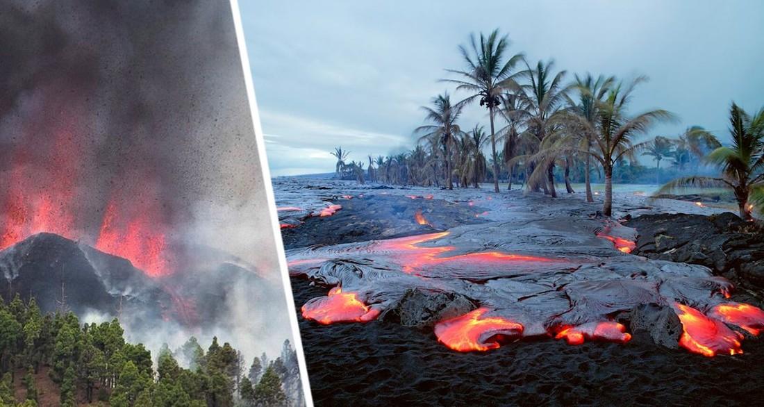 Мы совершенно бессильны: лавина отравленного газа приближается к пляжу